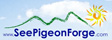 Come See Pigeon Forge